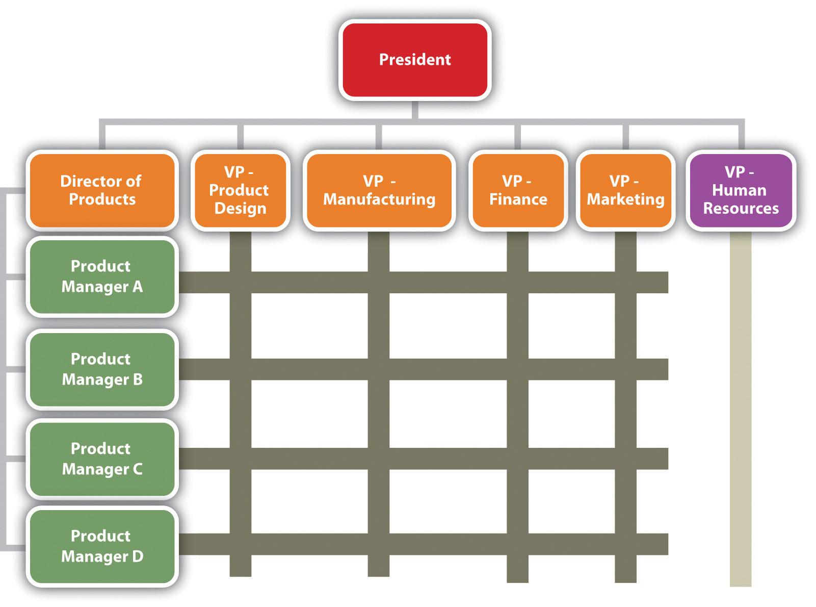 Organization Chart: Matrix Structure