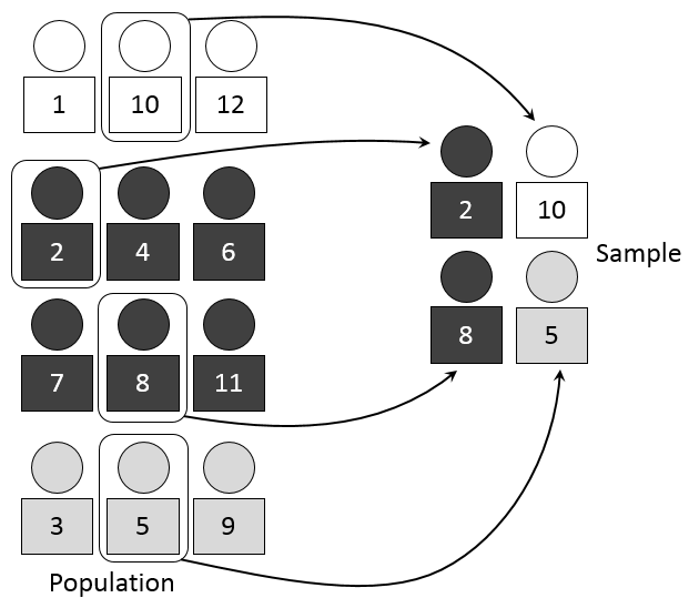Selecting a proportion of black, grey, and white students from a population into a sample